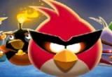 العاب الطيور الغاضبة الجديدة
